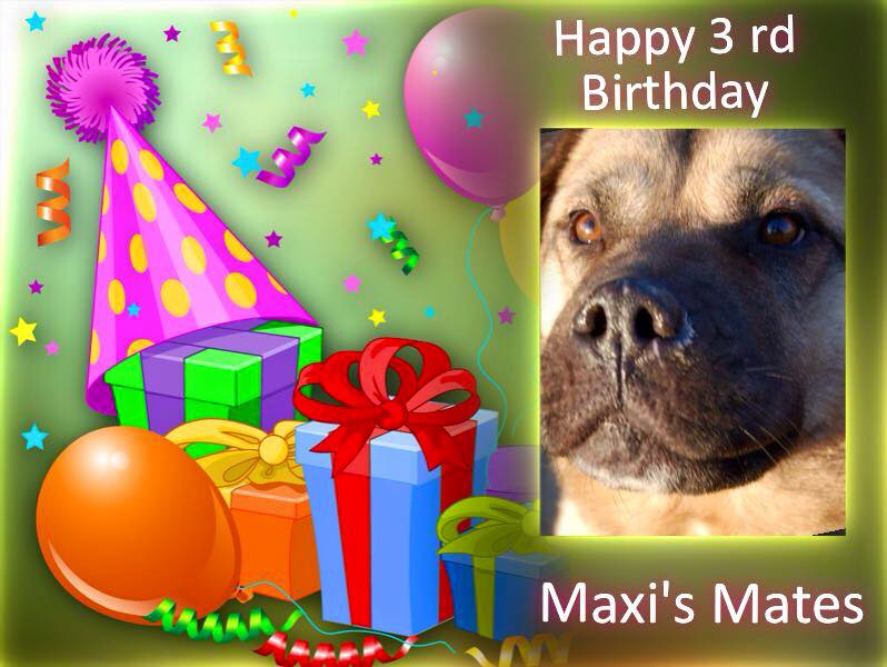happy 3rd birthday maxis