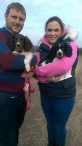 louise hill and the 2 pups